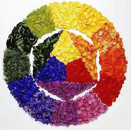 cerchio-cromatico-fiori